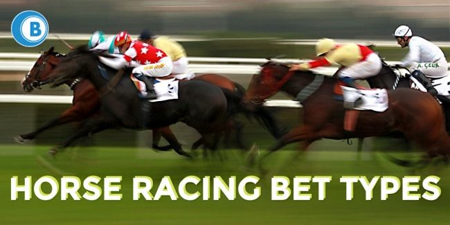 Horse racing betting terms defined